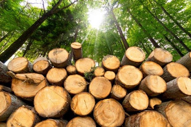 canadian-lumber-tariff